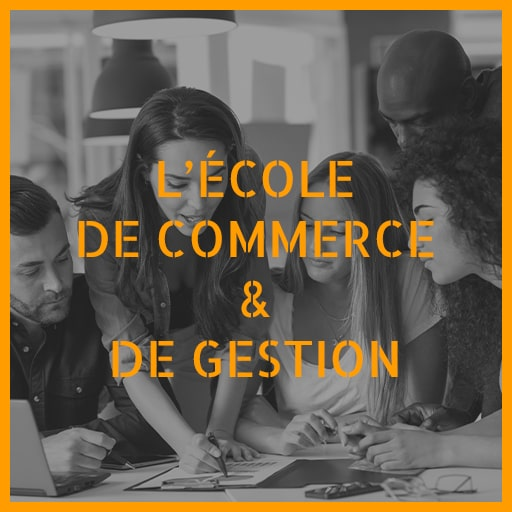 École de commerce et de gestion de la Sud Management Business School